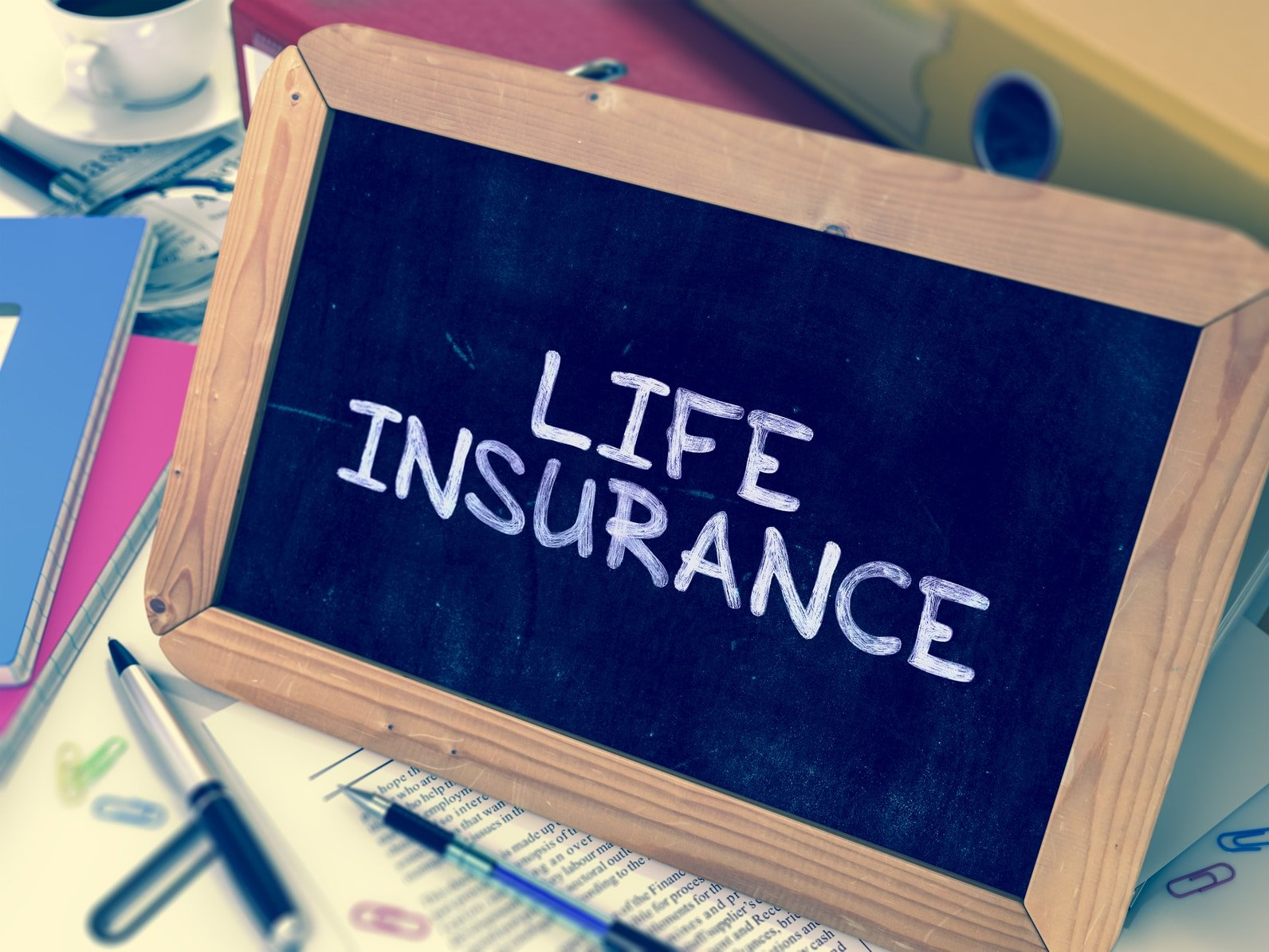 What are the different types of life insurance in Florida?